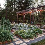 Cool Backyard Garden Ideas Vegetables