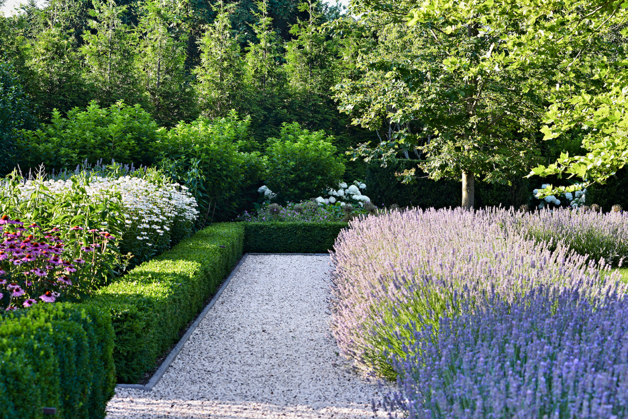 Cool Garden Border Planting Ideas