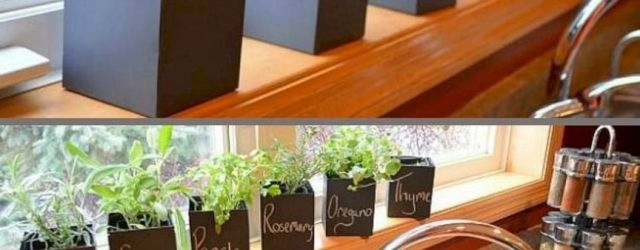Adorable  indoor herb garden ideas
