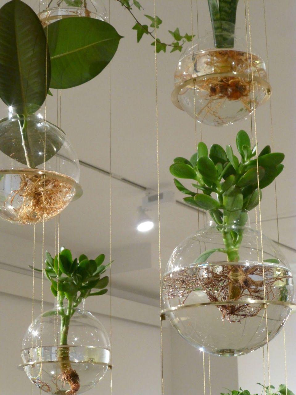 Gorgeous Creative Indoor Planter Ideas