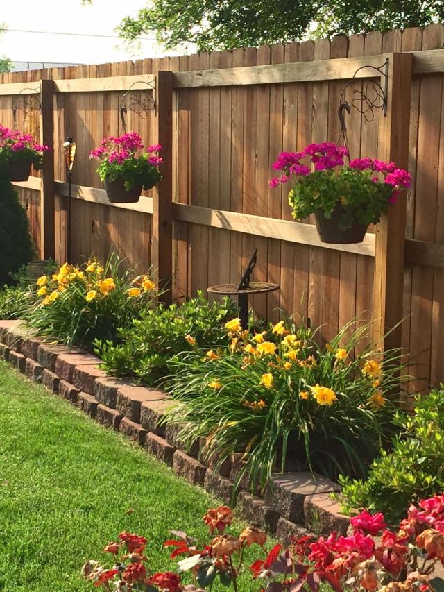 Cool backyard garden ideas on a budget