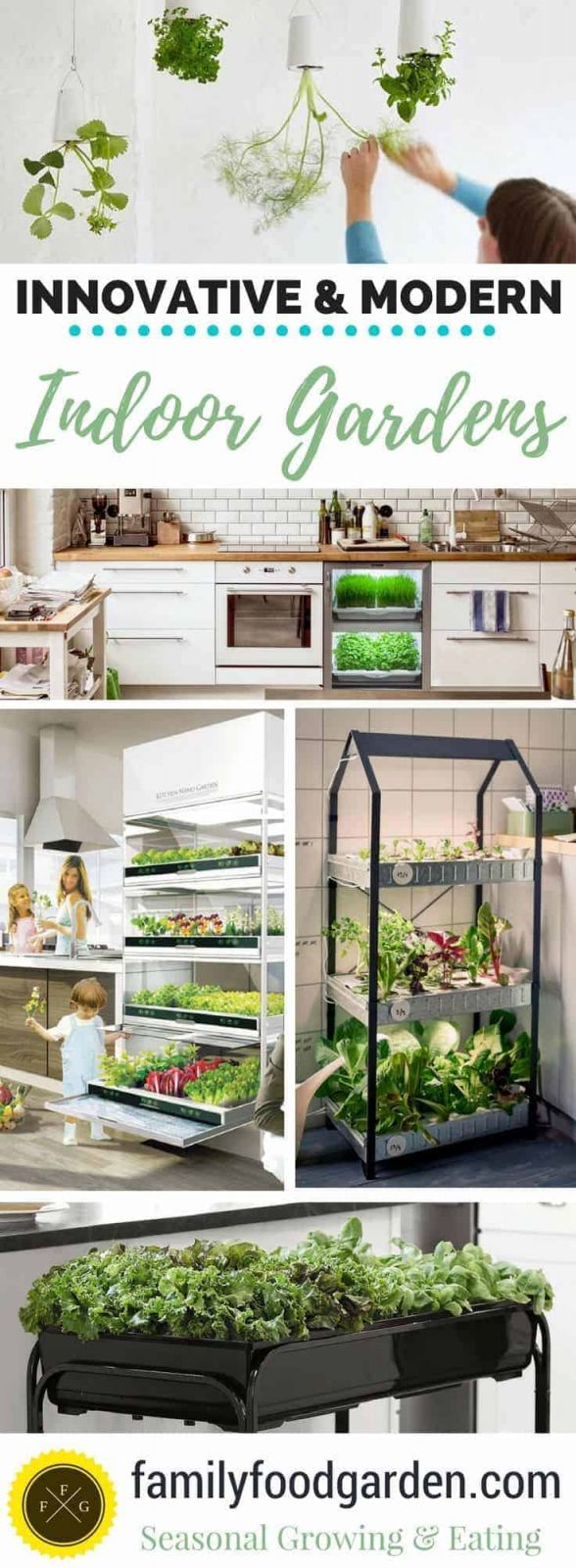 Top Indoor Vegetable Garden Ideas