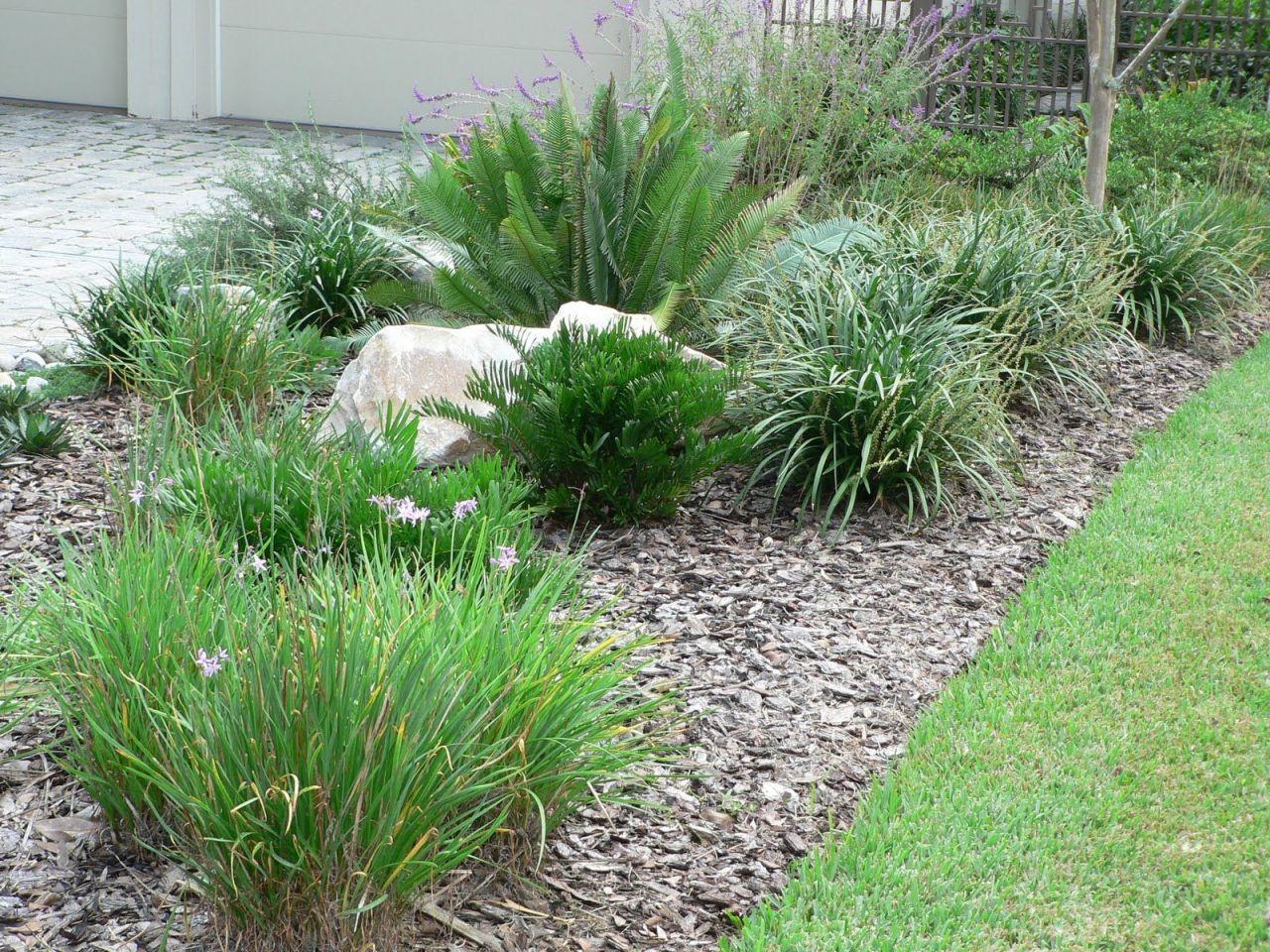 Amazing Low Maintenance Front Garden Ideas