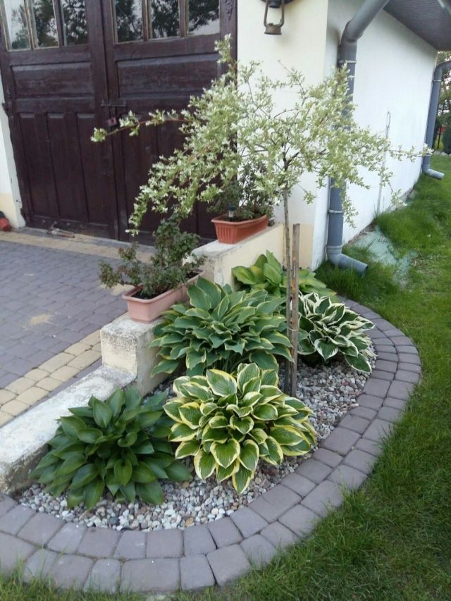 Adorable small flower bed ideas for front of house