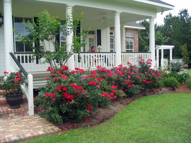 Fantastic landscaping in front of porch