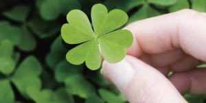 Life & Luck