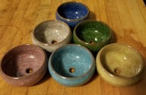 assorted succulent pots