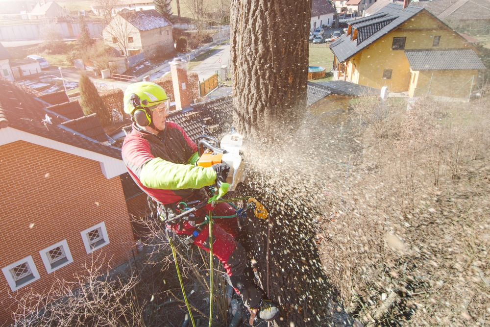 Gardening Careers Tree Surgeon