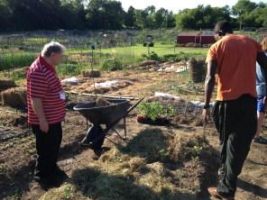 Felix and Ken spreading mulch