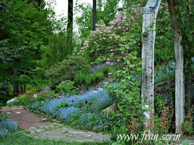 Color In the Gardene
