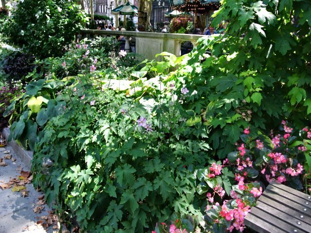 Lynden Miller plantings at Bryant Park