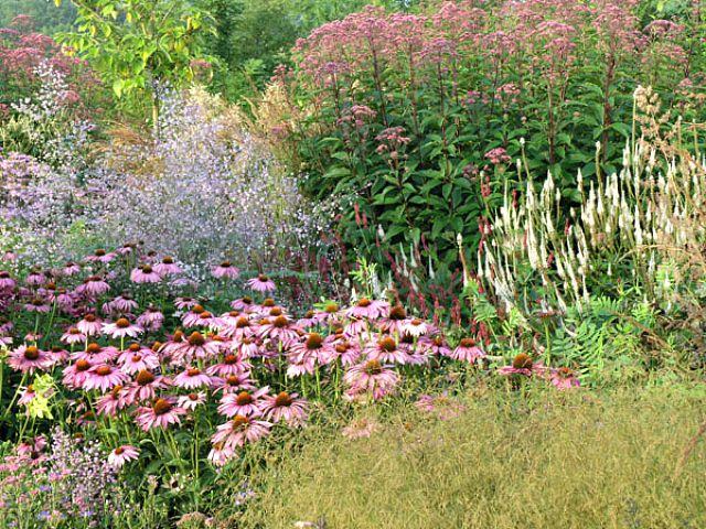 Dream Garden-Locus Flevum