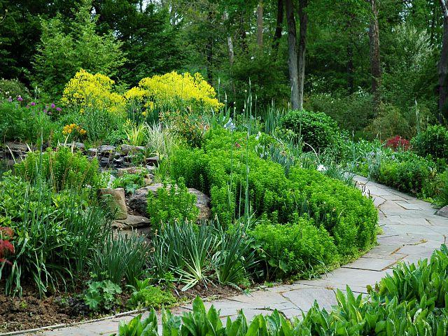 2005-05-13 17.40.44.jpg-Dream Garden