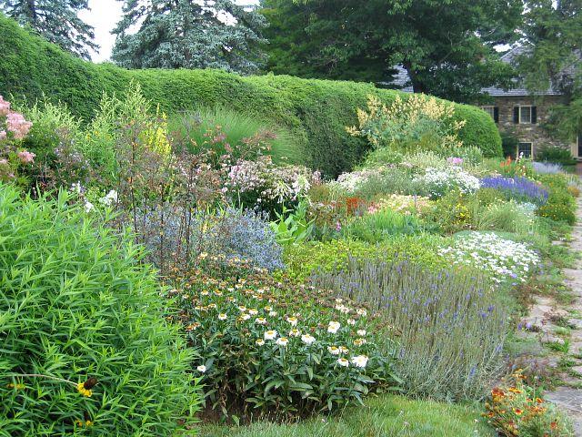 Doe Run- Sir John Thouron's Garden