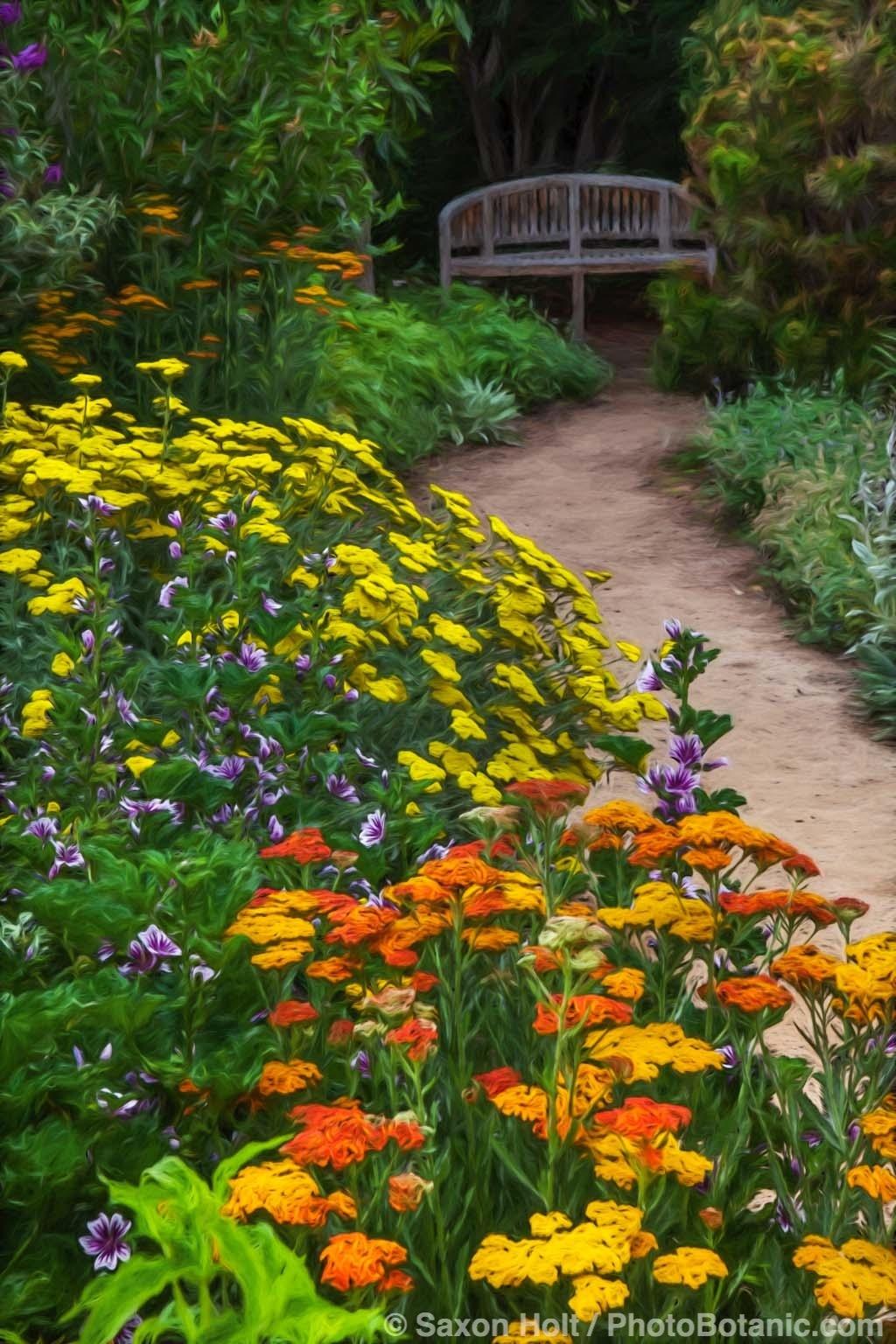 Butterfly Pollinator Garden at Rio Grande Botanic Garden
