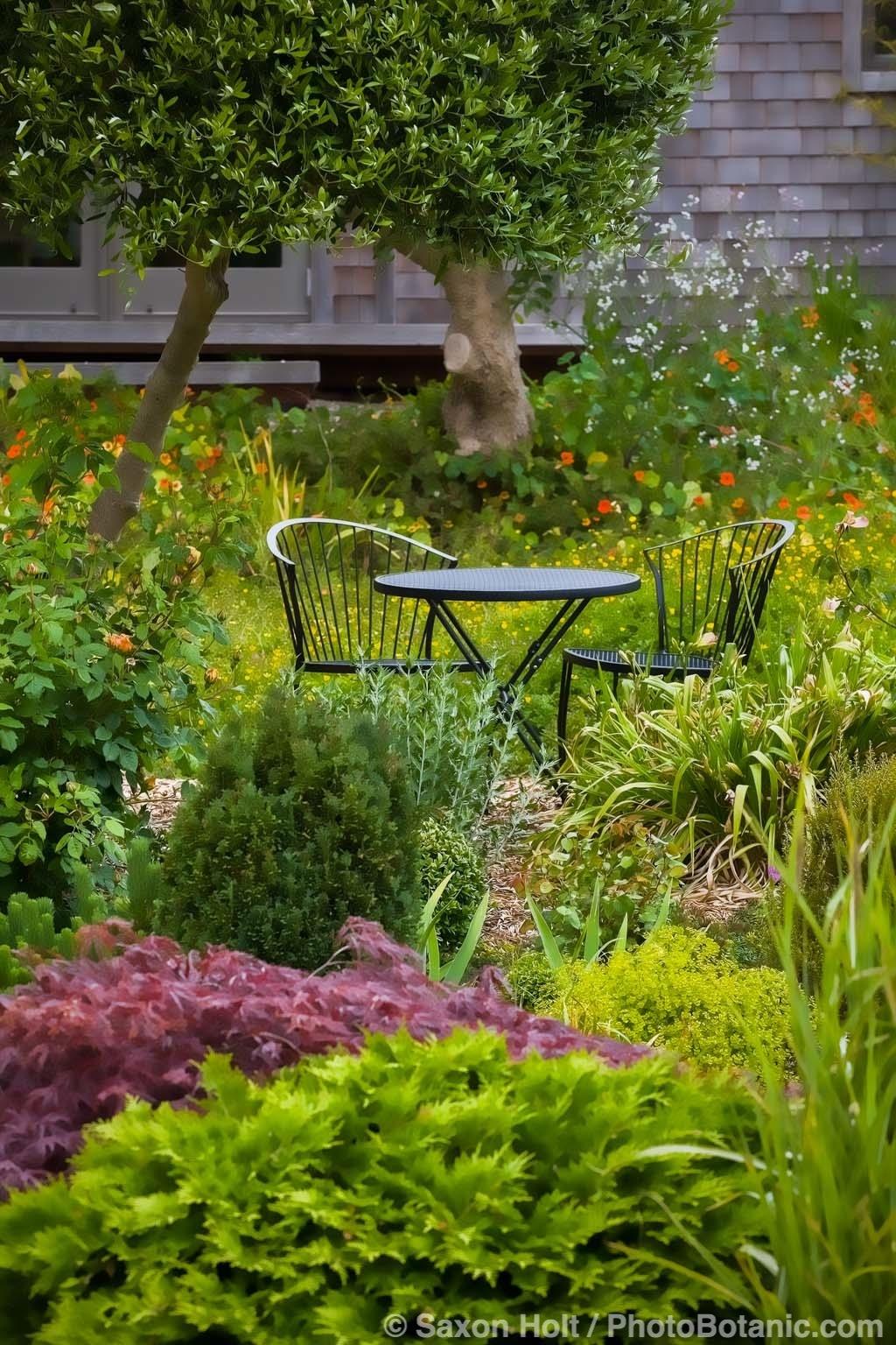 Breakfast Nook in Sally's Garden