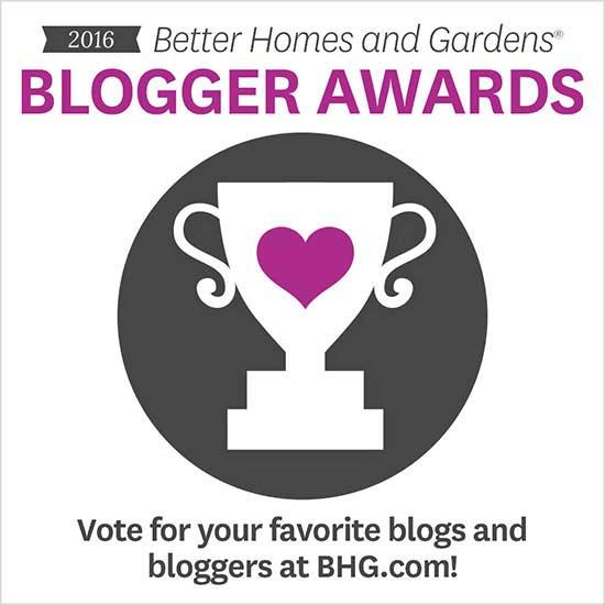 blogger awards 2016