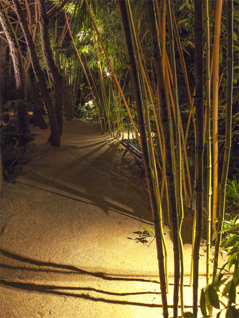 Eclairage nocturne: Jean Philippe Weimer Les Jardins Agapanthe 76 France