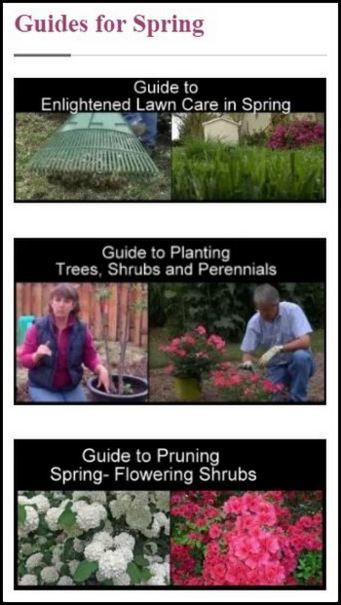 Good Gardening Videos