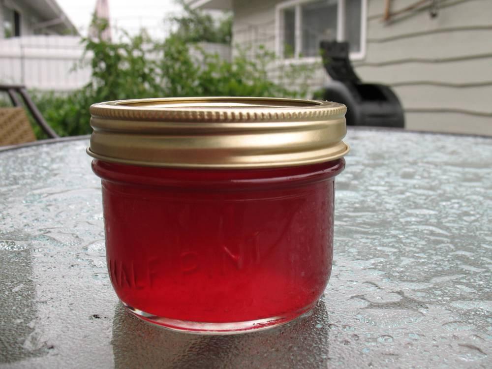 Carmine Jewel Cherry: A True Jewel of a Fruit Tree (2/4)