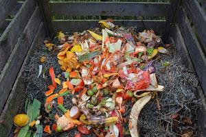 Composting for eco friendly organic sustainable garden