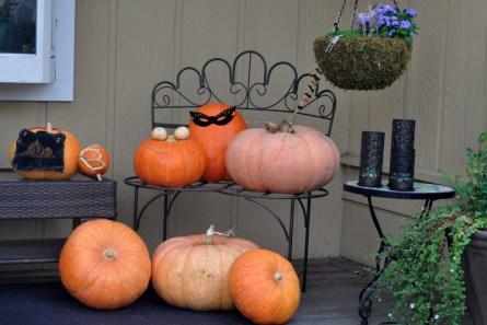 Our largest pumpkins ever (46 - 64 pounds)