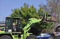 yard-waste-disposal-004