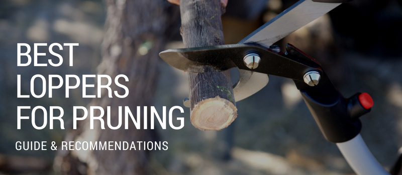 Best Loppers for Pruning Image
