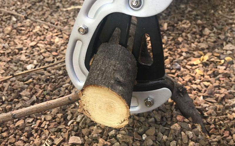 Centuron lopper cutting through deadwood