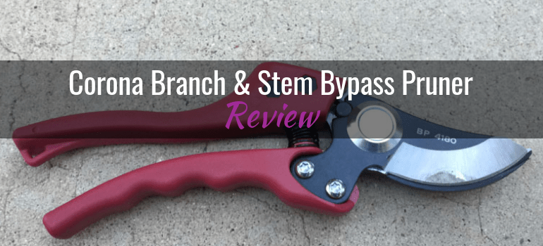 Corona-Bypass-Pruner-4180-featured-image