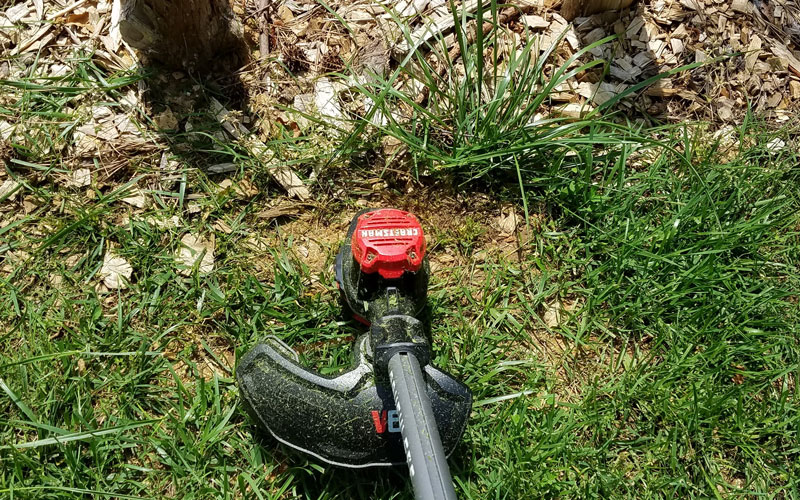 Craftsman 60V String Trimmer around tree