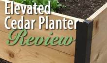 Elevated Cedar Planter Box from Gardener's Supply: Product Review