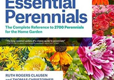 Book review of Essential Perennials