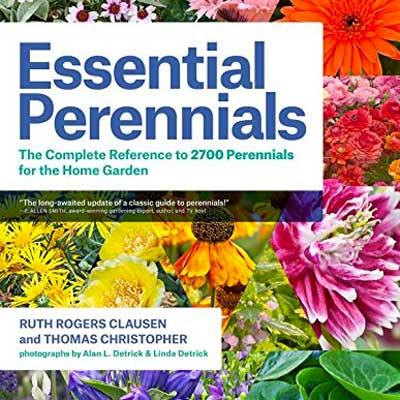 Book review of Essential Perennials