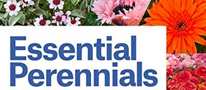 Book Review: Essential Perennials