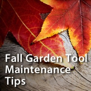 fall garden tool maintenance
