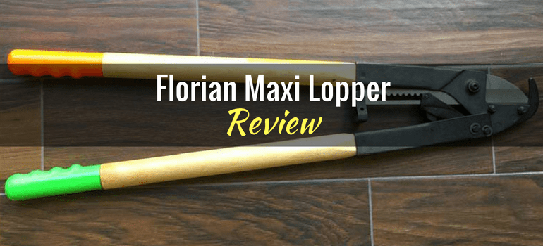 florian-maxi-loppers-opening-pic