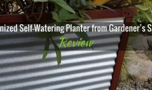 Galvanized Self-Watering Planter from Gardener's Supply: Product Review