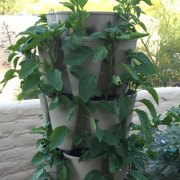 GreenStalk Stackable Planter: Product Review