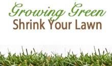 Growing Green – Shrink Your Lawn
