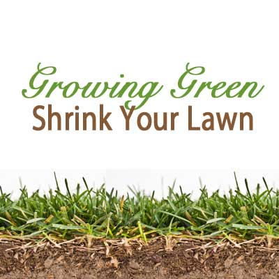 shrink your lawn