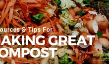 Composting: Resources and Tips for Making Great Compost
