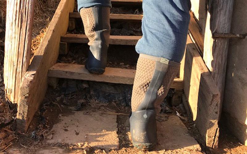 Lacrosse alpha lite boot on steps