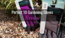 Perfect 10 Gloves with Nailguard Technology: Product Review