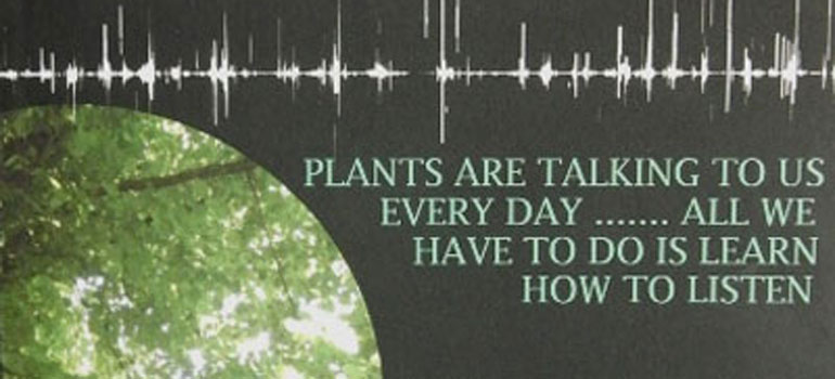 cover of The Plant Listener