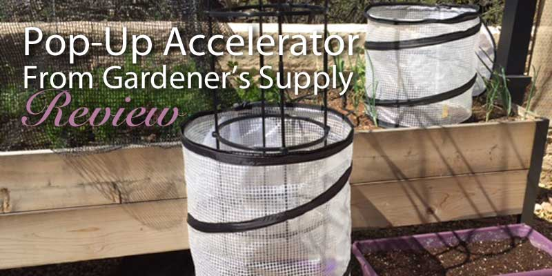 Pop-Up Accelerator review