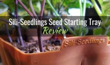 Sili-Seedlings Seed Starting Tray: Product Review