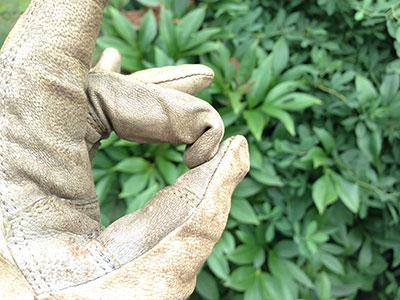 Very long fingers on StoneBreaker Gloves