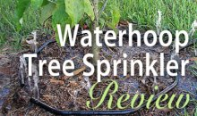Waterhoop Tree Sprinkler: Product Review
