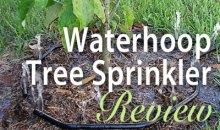 Waterhoop Tree Sprinkler: Product Review